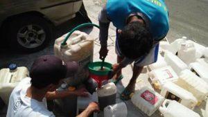 Pemindahan air kencing kelinci murni